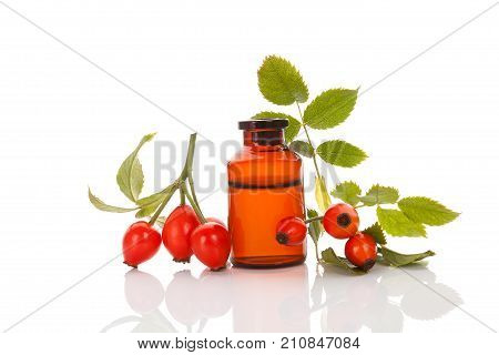 Rose hip. Medicine bottle with hip roses isolated on white. Fresh briar isolated on white background. Wild rose.