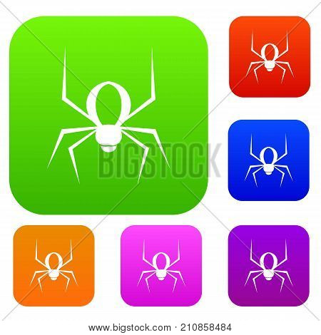 Spider set icon color in flat style isolated on white. Collection sings vector illustration