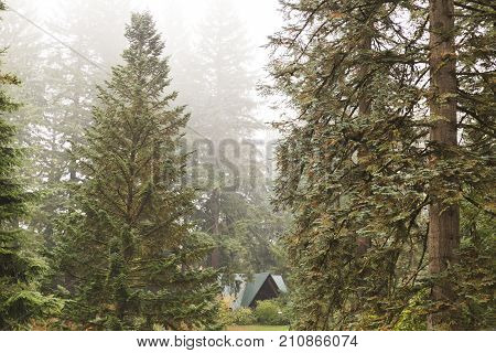 A-frame Structure In Foggy Forest