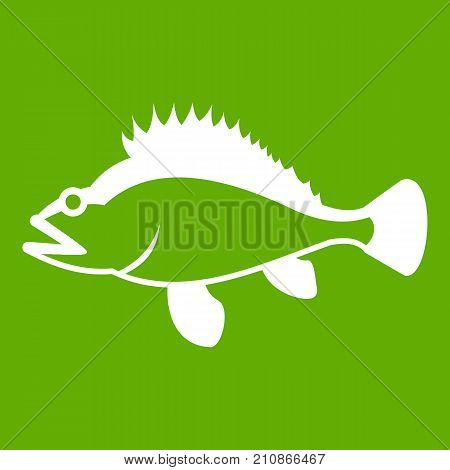 Rose fish, Sebastes norvegicus icon white isolated on green background. Vector illustration