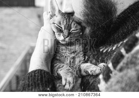 Cat and man, portrait of happy cat with close eyes and young man. Handsome Young Animal-Lover Man, Hugging and Cuddling his Gray Domestic Cat Pet. Black and white photo.