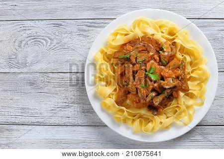 Tasty Pasta With Beef Stroganoff Stew