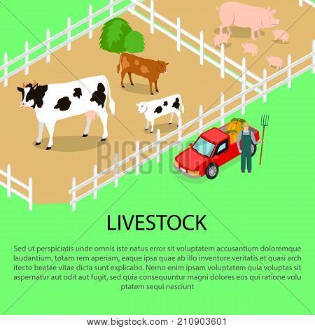 Farm with livestock and farmer near red car, text information below. Agricultural compositions isometric vector illustration poster