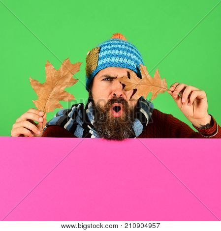 Man In Hat Closes Eyes With Oak Leaves