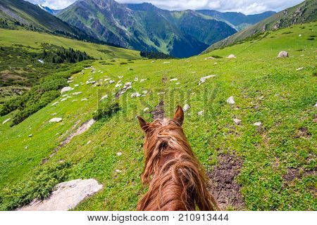 View Over Valley From The Horse Back, Kyrgyzstan