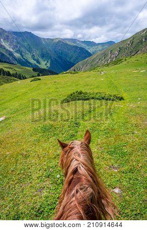 Green Kyrgyz Mountains, Altyn Arashan