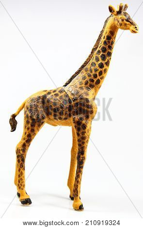 A huge toy giraffe on white background