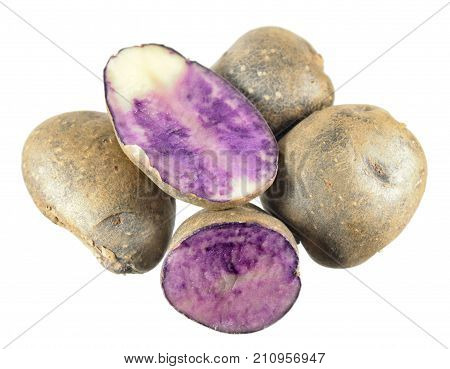 Blue potatoes (Solanum tuberosum) isolated on white background