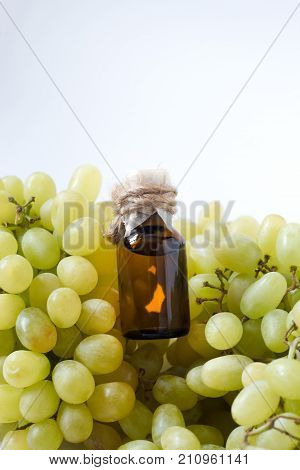 Grape Seed Oil: Seed Extract Has Antioxidant And Nourishing The Skin. .