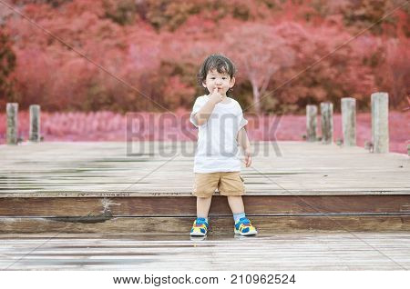 Closeup asian kid stand on wood pathway in the park background