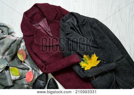 Bordeaux And Gray Coats, Scarf, Black Shoes And Autumn Leaves. Fashionable Concept