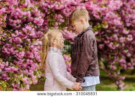 Kids In Love Pink Cherry Blossom. Love Is In The Air. Couple Adorable Lovely Kids Walk Sakura Garden