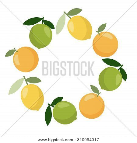 Citrus Vector Banner. Summer Exotic Food In Flat Style