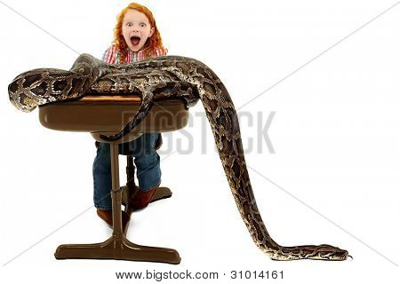 Adorable scared elementary student screaming as an escaped python slithers across her desk during a school show and tell escape. poster