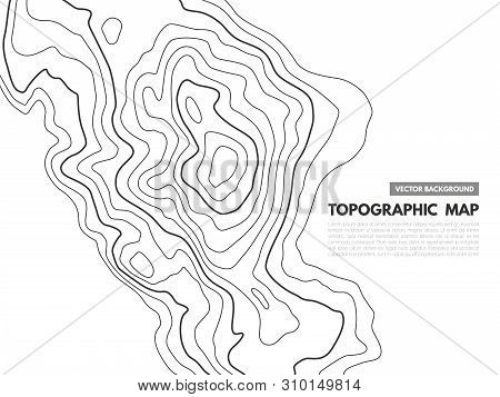 Contour Line Map. Topographical Relief Outline, Cartography Texture Geographic World Mapping Grid Te