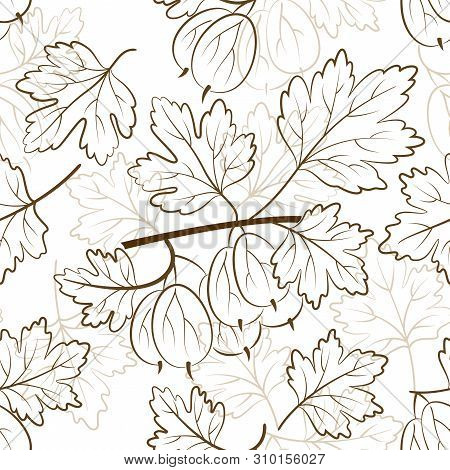 Seamless Nature Background With Pictogram Gooseberry Berries And Leaves On White. Vector
