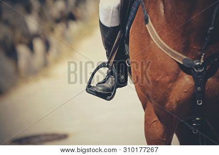 Equestrian Sport. The Leg Of The Rider In The Stirrup, Riding On A Red Horse. Dressage Of Horses