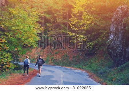 Rear View Of Young Couple Walking On Road Through Woods With Backpacks. Man And Woman Hiking In Fore