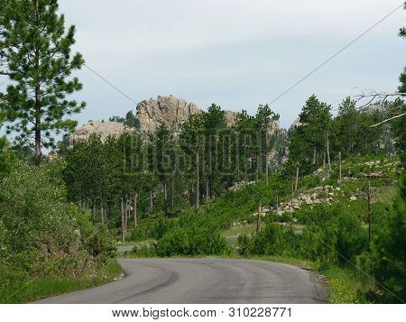Scenic Landscape Distance Seen Along Needles Highway At Custer State Park, South Dakota.
