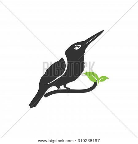 Nature Bird Logo Illustration, Nature Bird Logo, Animal Rescue Foundation, Flying Bird Logo. Line Ar