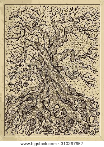 Tree. Mystic Concept For Lenormand Oracle Tarot Card. Vector Engraved Illustration. Fantasy Line Art