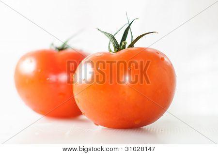 Two tomato on white