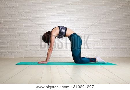 Woman Doing Fitness Stretching Exercises Indoors Workout In The Studio Healthy Body Lifestyle