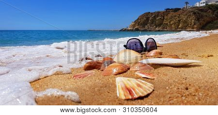 Sea Shells And Sunglasses On The Beach. Concept For Summer Vacation