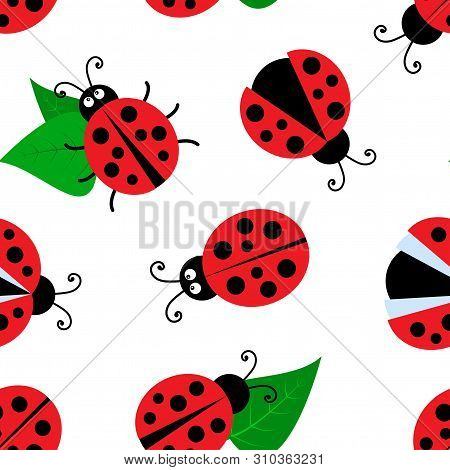 Summer Seamless Pattern With Ladybugs And Leaves Isolated On White Background. Vector Illustration