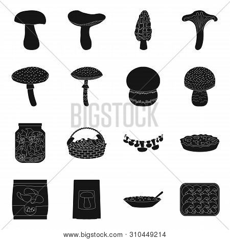 Vector Illustration Of Variety And Ingredient Sign. Set Of Variety And Food Vector Icon For Stock.