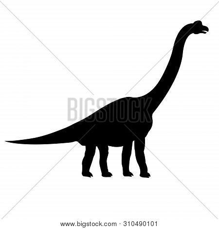 Vector Black Silhouette Of Brachiosaurus Isolated On White Background