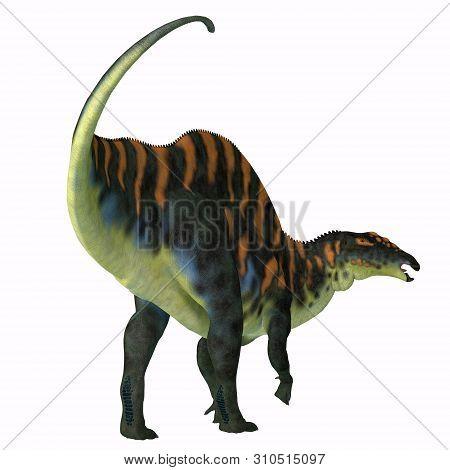 Ouranosaurus Dinosaur Tail 3d Illustration - Ouranosaurus Was A Herbivorous Hadrosaur Dinosaur That