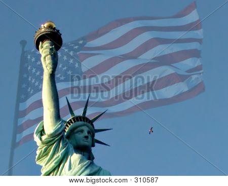 Flight To Liberty