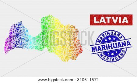 Construction Latvia Map And Blue Marihuana Scratched Seal Stamp. Colorful Gradient Vector Latvia Map