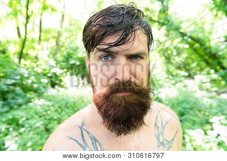 Treat Your Hair Today. Bearded Man With Wet Oily Hair On Natural Environment. Hairy Hipster Wearing