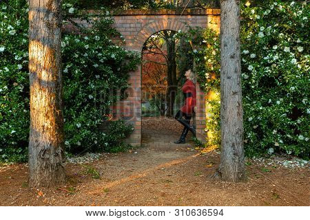 Woman Standing In The Garden Arch, With Blooming Hedges Of Camelia And Autumn Trees In Russet Tones