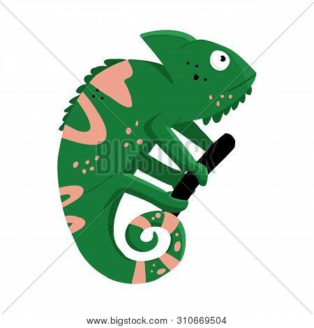 Vector Design Of Green And Lizard Icon. Set Of Green And Quirky Stock Vector Illustration.