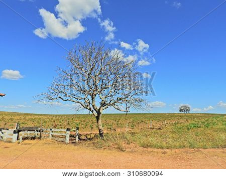View of MT 351 road, way to Bom Jardim Village, Nobres, Mato Grosso, Brazil. Great landscape. Travel destination. Vacation travel. Touristic point. Contryside scene. poster