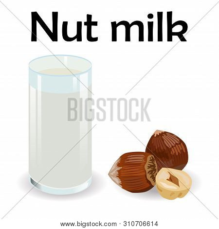 Glass Of Hazelnut Milk With Nuts. Vegan Alternative Organic Filbert Milk Splash Pour In Glass. Non D
