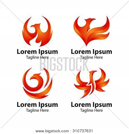 Phoenix Bird Logo Concept. Luxury Phoenix Logo, Vector Logo Bird. Creative Logo For Mythological Bir