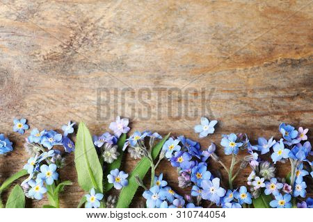 Beautiful Forget-me-not Flowers And Space For Text On Wooden Background, Flat Lay
