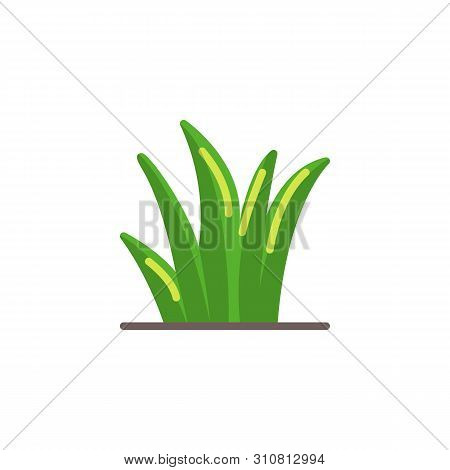 Grass Leaves Flat Icon, Reed Vector Sign, Grass Plant Stem Colorful Pictogram Isolated On White. Nat