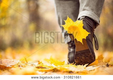 Yellow Leaf Stuck To The Women Shoe During A Walk Through The Autumn Forest. Indian Summer Season