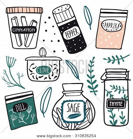 Herbs And Spices Jars Icon Set: Cinnamon, Dill, Thyme, Sage, Clove, Pepper. Hand Drawn Vector Kitche