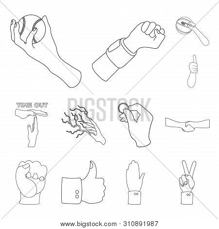 Isolated Object Of Animated And Thumb Symbol. Set Of Animated And Gesture Stock Symbol For Web.
