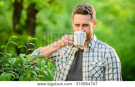 Whole Leaf Tea. Excellent Taste. Enjoy Hot Beverage. Natural Drink. Healthy Lifestyle. I Prefer Gree