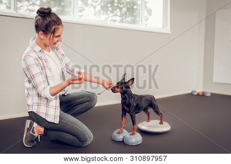 Dark-haired Woman Wearing Jeans Taking Care Of Her Black Dog