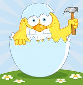 Yellow Chick With A Big Toothy Grin, Peeking Out Of An Egg With Hammer poster