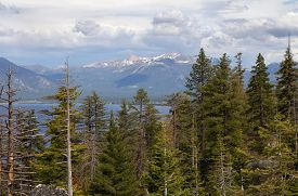 Lake Tahoe. View With Forest, Lake And Mountain.