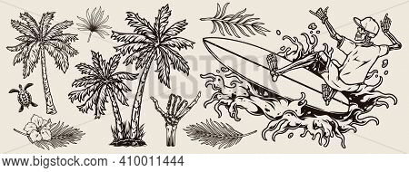 Surfing Vintage Monochrome Composition With Exotic Flowers Leaves Palm Trees Turtle Skeleton Hand Sh